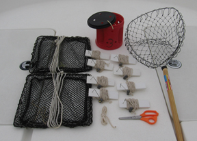 Crabbing Gear Rentals Talbot County, Easton, Dorchester County, Kent County
